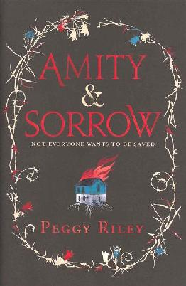 Cover: Amity and Sorrow