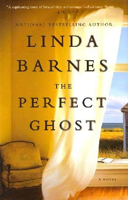 Cover: The Perfect Ghost