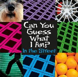 Cover of In the Street