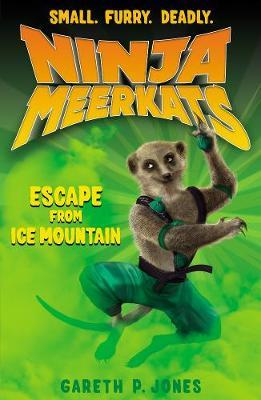 Cover of Escape from Ice Mountain