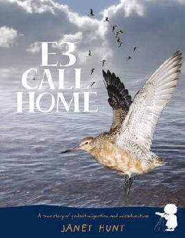 Cover: E3 Call Home